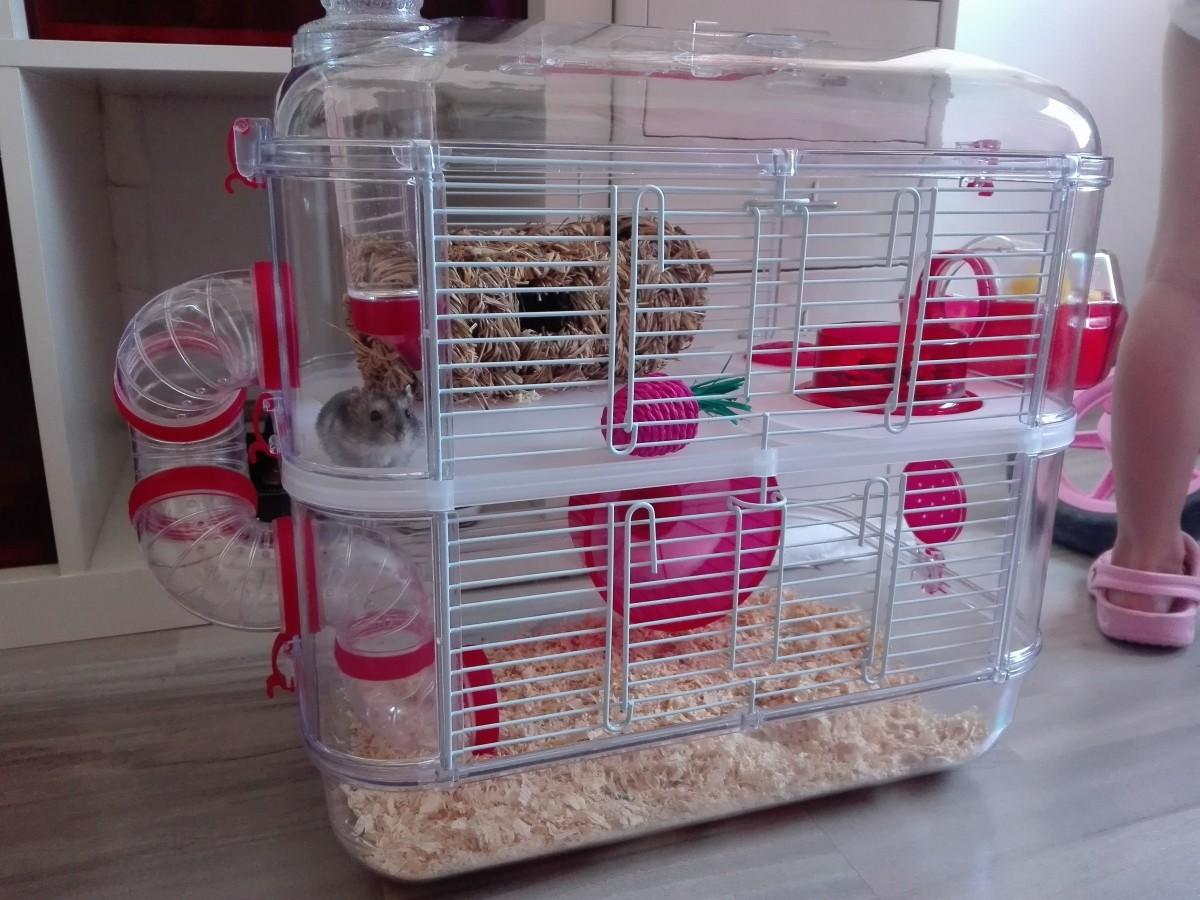 jaula rodylounge duo color cereza jaula para hamster. Black Bedroom Furniture Sets. Home Design Ideas