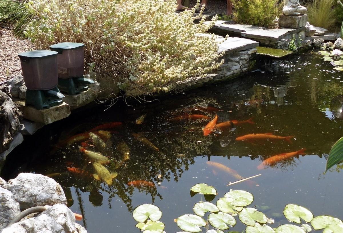 Pond fish feeder p7000 dispensador de comida para peces for Bloc de nourriture pour poisson