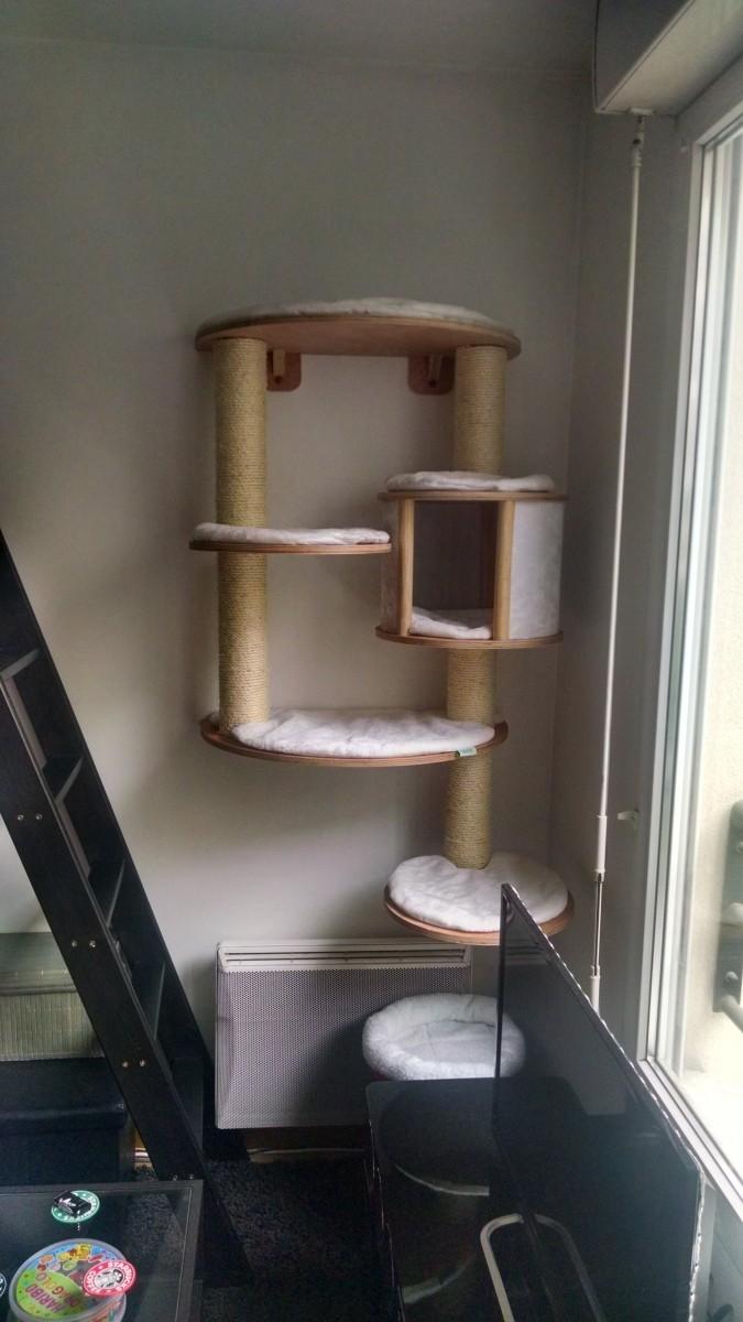 rbol para gatos mural dolomit pro rbol para gato. Black Bedroom Furniture Sets. Home Design Ideas