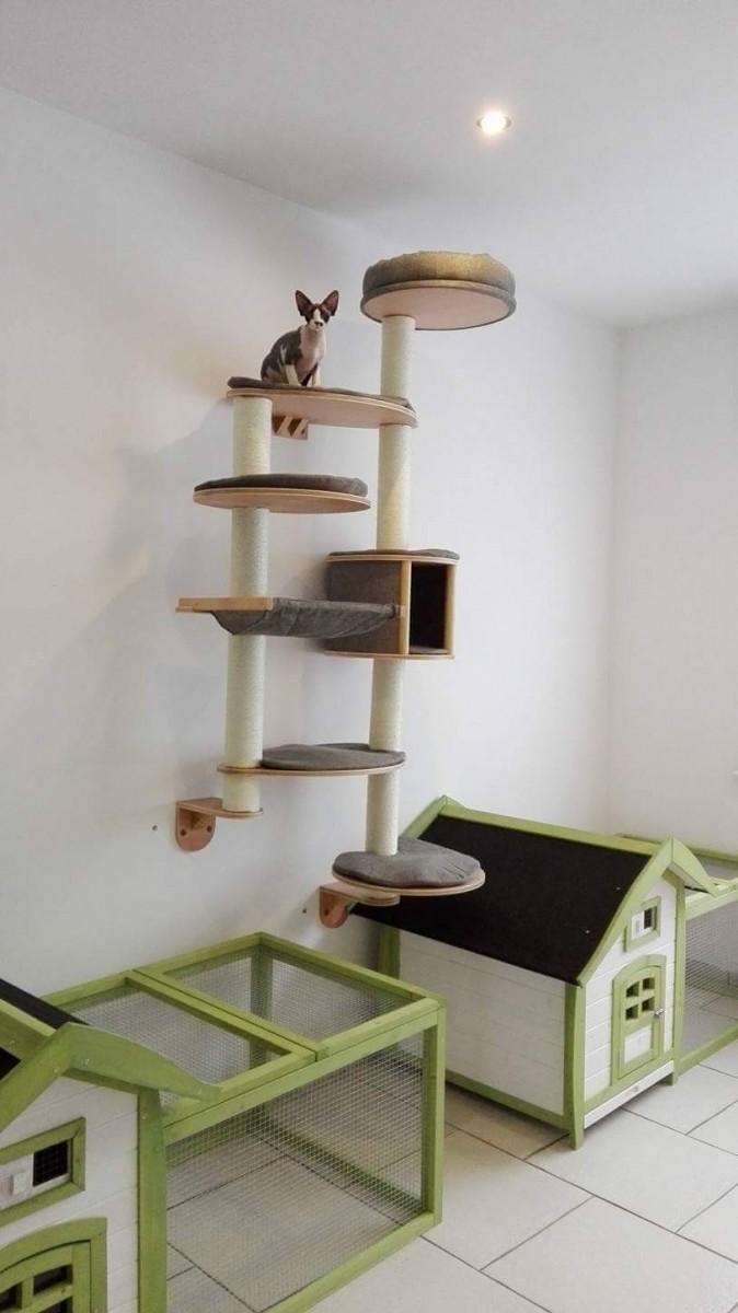 rbol para gatos mural domomit xl tofana 168 x 75 cm gris rbol para gato. Black Bedroom Furniture Sets. Home Design Ideas